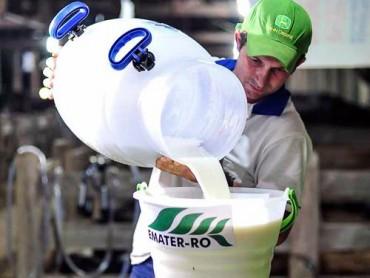 Todo leite do concurso será distribuído às famílias carentes ou instituições beneficentes
